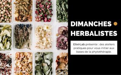 Les dimanches herbalistes – mai/juin 2021