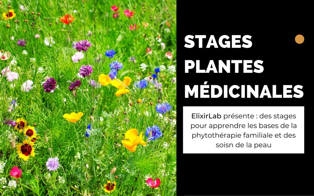 Stage plantes médicinales 5/6 juin 2021